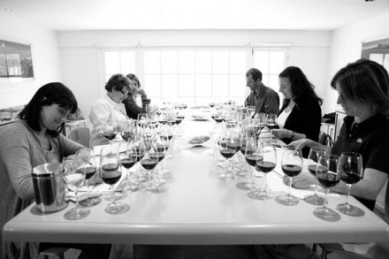 Top Winemakers Chile - 5x20 das mulheres