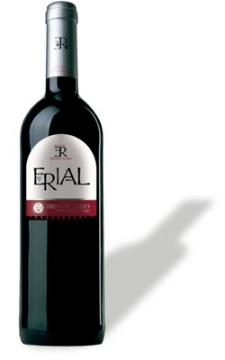 erial_2007