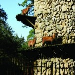 torre_cabras2
