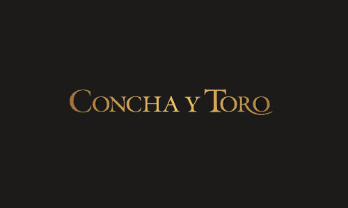 conchaYtoro_header