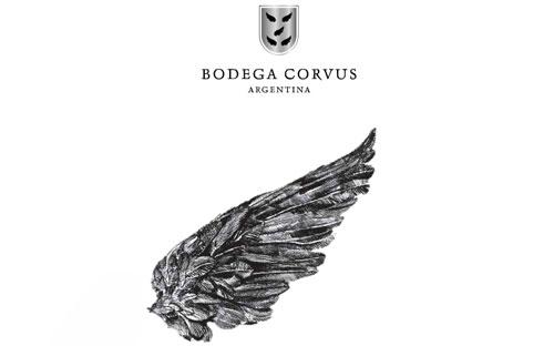 bodega_corvus