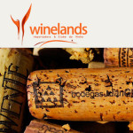 winelands promocao