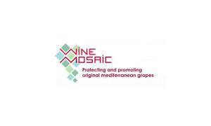 wine_Mosaic