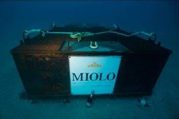 miolo_mar01